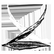 Leaf arrows (right)