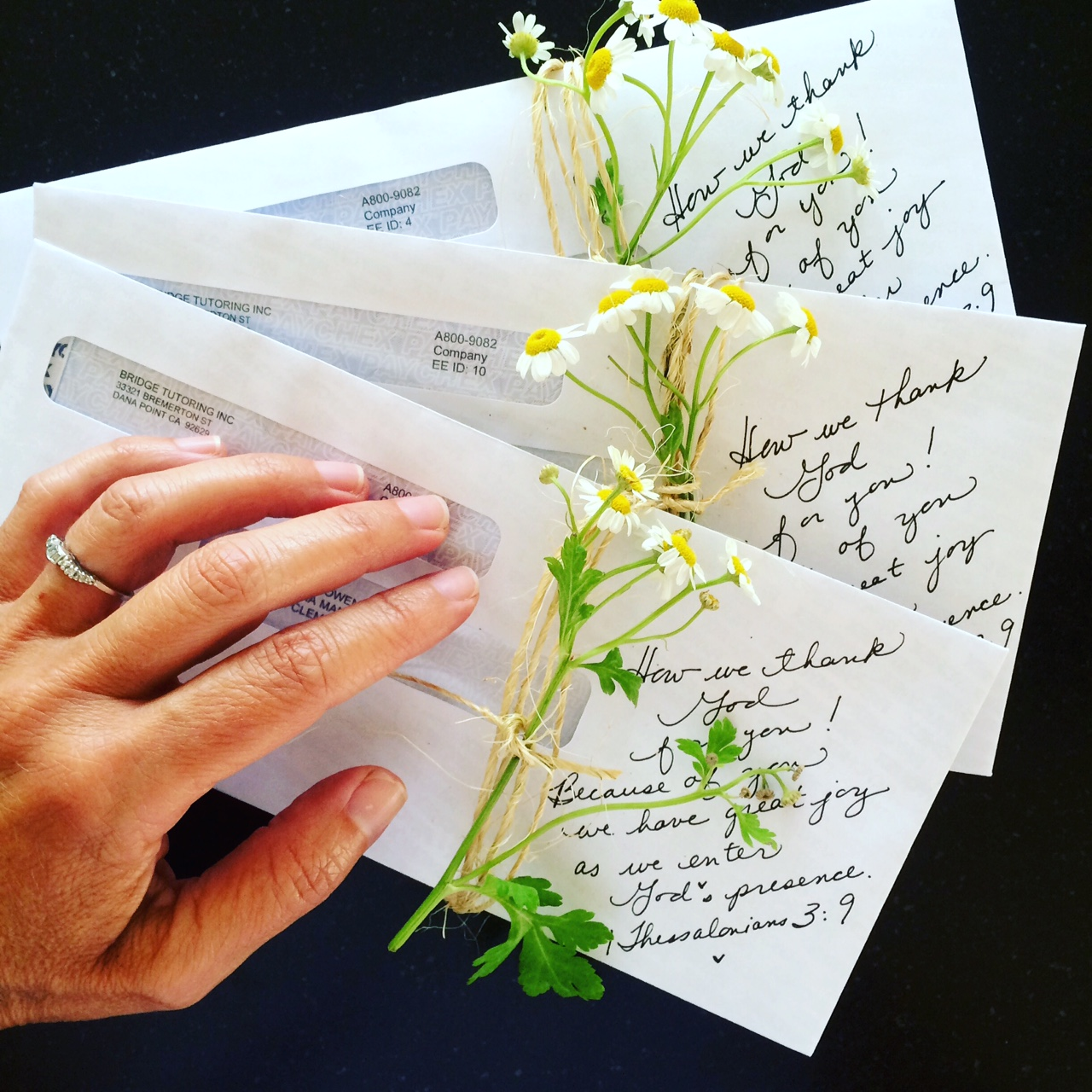 Using Chamomile on Envelopes by Patricia for Casagiove